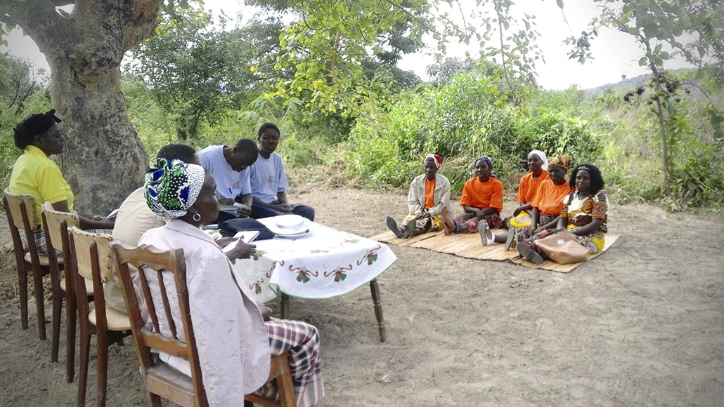 Women in Mozambique participate in the PEMA program to learn about commercial agriculture.